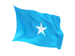 American Embassy commemorates the Somali Flag. Pic - SomaliNet Forums