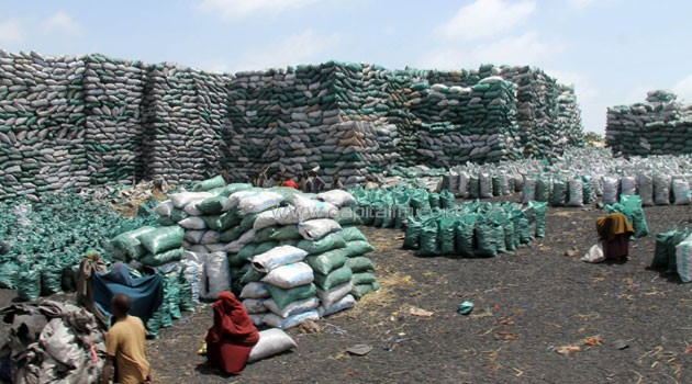 UN urges Kenyan troops to stop Somalia charcoal export