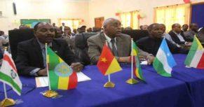 Som _Ethiopia