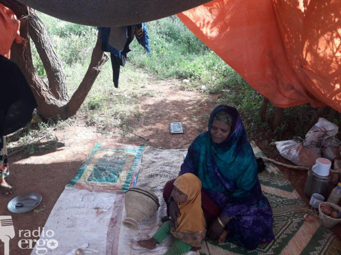 Clan conflict causes chaos for families in Sool region