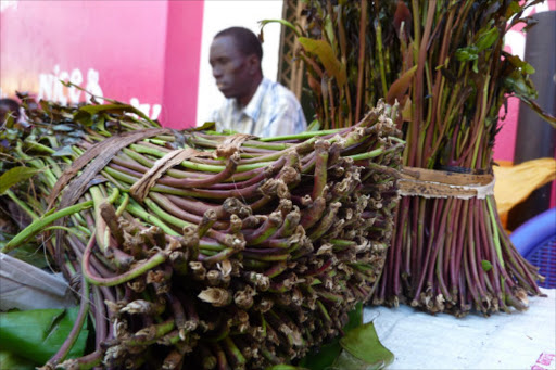 Miraa traders seek MPs' intervention to restore Somalia market