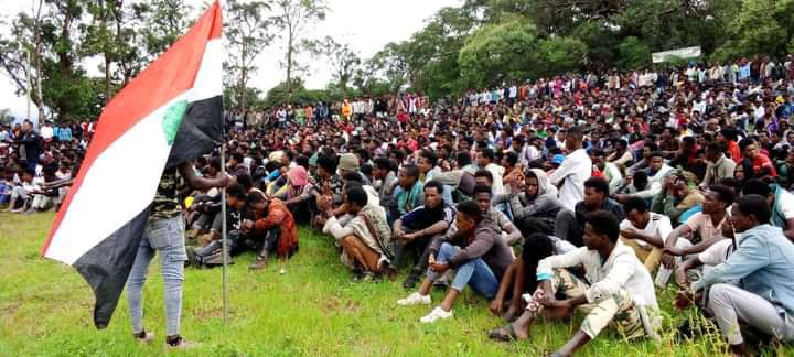 OROMIA REGIONAL GOV'T CLAIM VOLUNTARY YOUTH RECRUITMENT, REGION'S OPPOSITION DISPUTE CLAIM, DEPICT PROCESS AS CONSCRIPTION