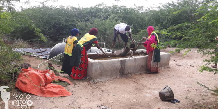 Somalia's first biogas plant provides jobs for IDPs
